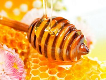 مواد و ترکیبات تشکیل دهنده عسل