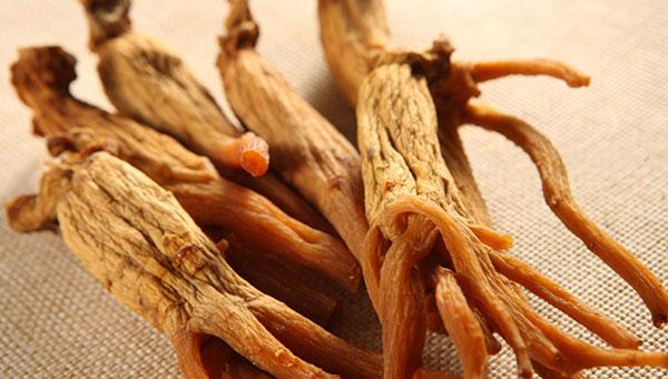ریشه جینسینگ هندی