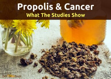 xPropolis and Cancer 850x600.png.pagespeed.ic .kTpooPoCak